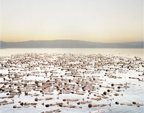 Spencer Tunick's Kickstarter funded project, Naked Sea (detail)