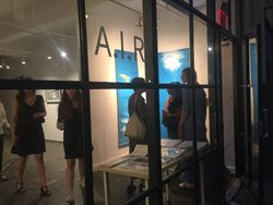 Laura Mitchell, A.I.R. Gallery Opening Night