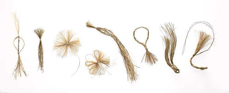 Holly Story, Riparian Charms #2, 2013. Juncus Krausii fibre, lightbox. 77cm x 105cm x 35cm. Photographer: Robert Frith.
